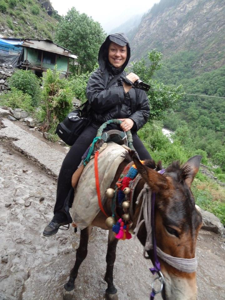 Долина цветов, Гималаи-1